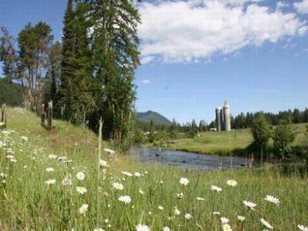 Beautiful Ranch With 2 Houses : Beaver Creek : Sanders County : Montana