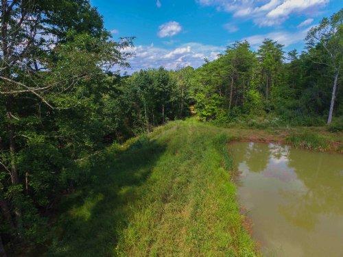 Taylor Rd - 53 Acres : Patriot : Gallia County : Ohio