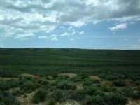 40 Acre Ranch In Sweetwater