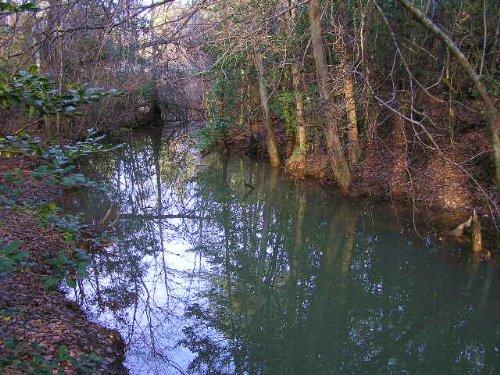 Creek, 10 Acres, Private : Spencer : Van Buren County : Tennessee