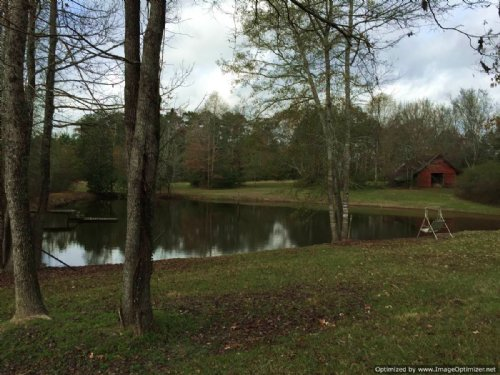 160± Ac Hunting / Recreational Land : Hazlehurst : Copiah County : Mississippi