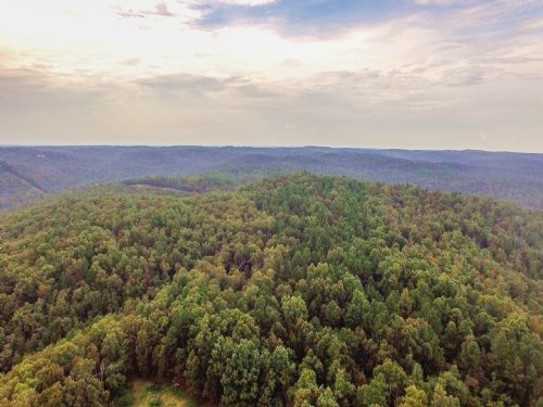1068 Acres At Wild Cherry : Pineville : Izard County : Arkansas