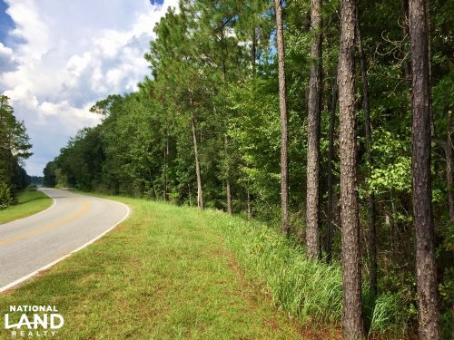 The Dyas Road Brushy Creek Tract : Bay Minette : Baldwin County : Alabama