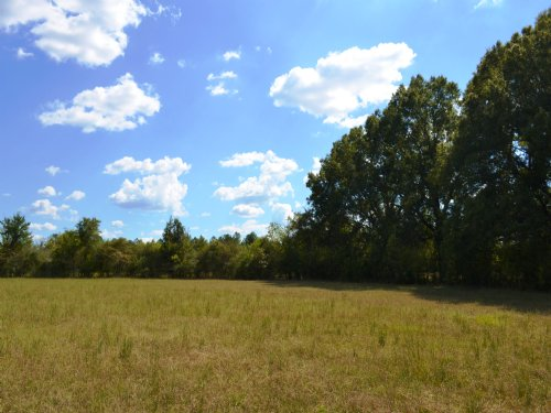 Wilkerson Tract : Montgomery : Alabama