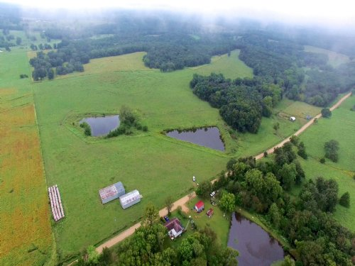 162.4 Acres, Lipton Rd : Syracuse : Morgan County : Missouri