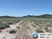 20.1 Acres Moon Valley Ranch : Termo : Lassen County : California