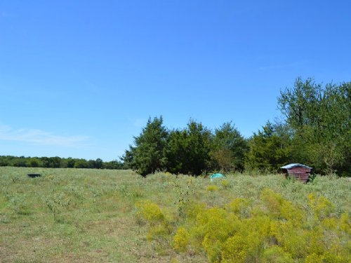 370 Acres / 30366 : Paris : Lamar County : Texas