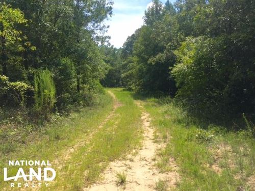 Hunting And Timber Tract With House : Rupert : Schley County : Georgia