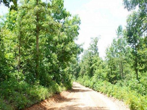 11.64 Acre Green Mountain Ranch. : Winona : Shannon County : Missouri