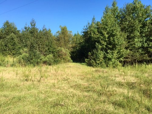 New Augusta Mississippi Ranches For Sale Ranchflip