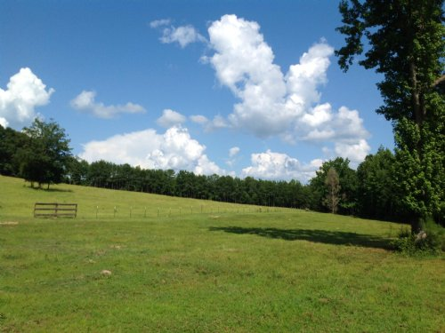 Taylor Creek Farm : Marion : Perry County : Alabama