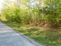 85 Acres, Road Frontage, Timber : Huntingdon : Carroll County : Tennessee