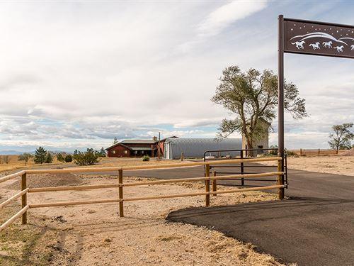 Horses, Hill, & Stars Ranch : Wheatland : Platte County : Wyoming