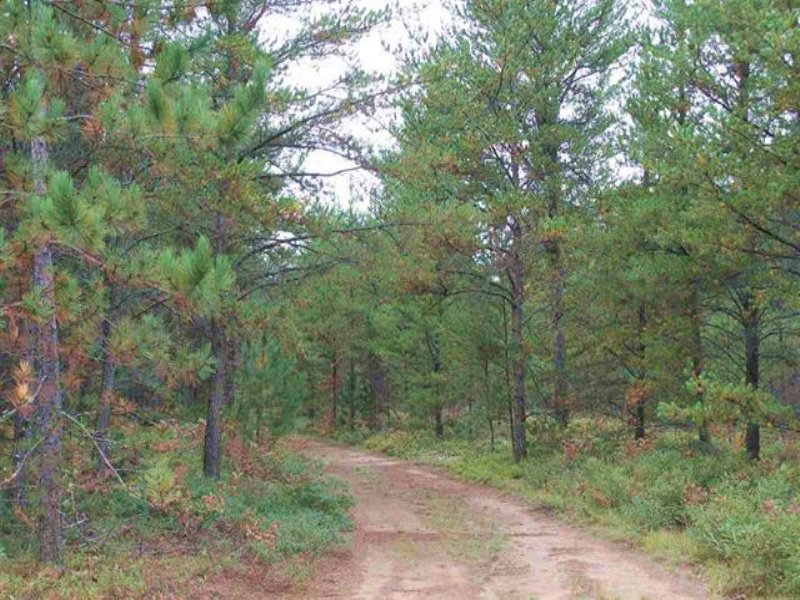 39 Acres Co Rd 581, Mls 1097362 : Ishpeming : Marquette County : Michigan