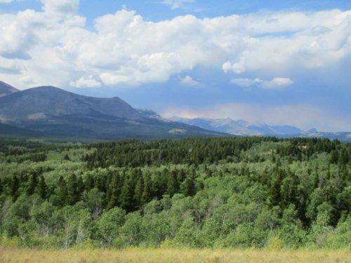 Glacier National Park Views : East Glacier Park : Glacier County : Montana