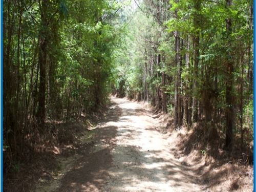 1671 Acres In Leake County In Carth : Carthage : Leake County : Mississippi