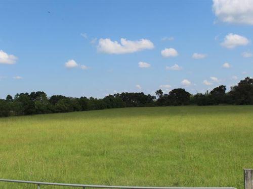 River Park 20 : Magnolia : Montgomery County : Texas