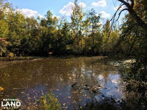 Millport Hwy 17 Tract : Millport : Lamar County : Alabama
