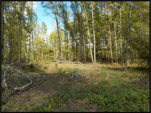 242 Acres In Noxubee County : Macon : Noxubee County : Mississippi