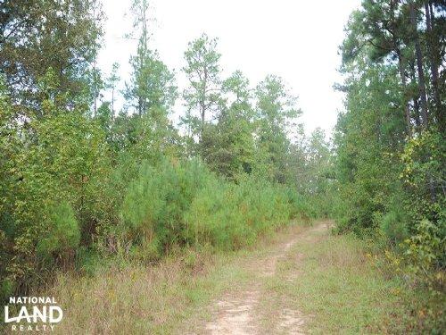 Gum Creek Development/Recreational : Laurinburg : Scotland County : North Carolina