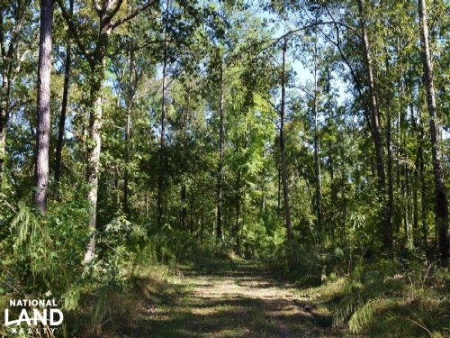 Marion Church Recreational Retreat : Salters : Williamsburg County : South Carolina