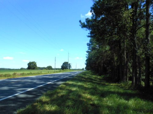 48 Acres With 4 Ac Lake : Branford : Suwannee County : Florida