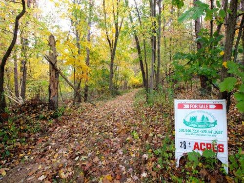 28 +/- Acres Land In Bloomsburg : Bloomsburg : Columbia County : Pennsylvania