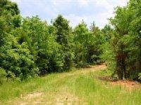 5.41 Acre Bluebird Ranch