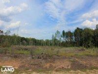 Branchville Recreational Timber Inv : Branchville : Orangeburg County : South Carolina