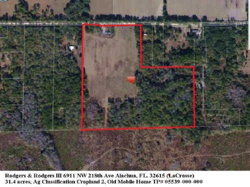 31.4 Acres In Meadow And Woods : Alachua : Florida