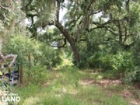 93 +/- Acre Ranch - Hunting / Get-a