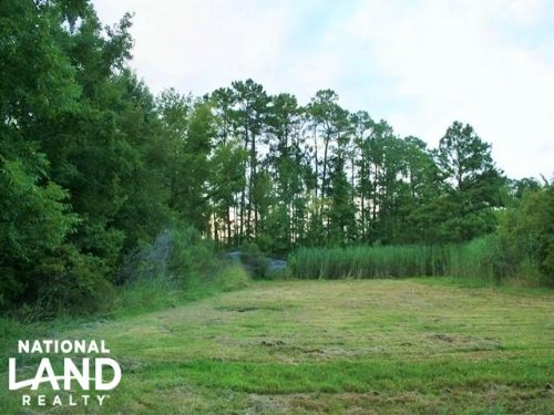Columbia 69.95 Acre Timber & Huntin : Columbia : Tyrrell County : North Carolina