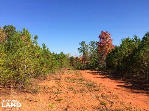 Cason Mountain Road Tract : Talking Rock : Pickens County : Georgia