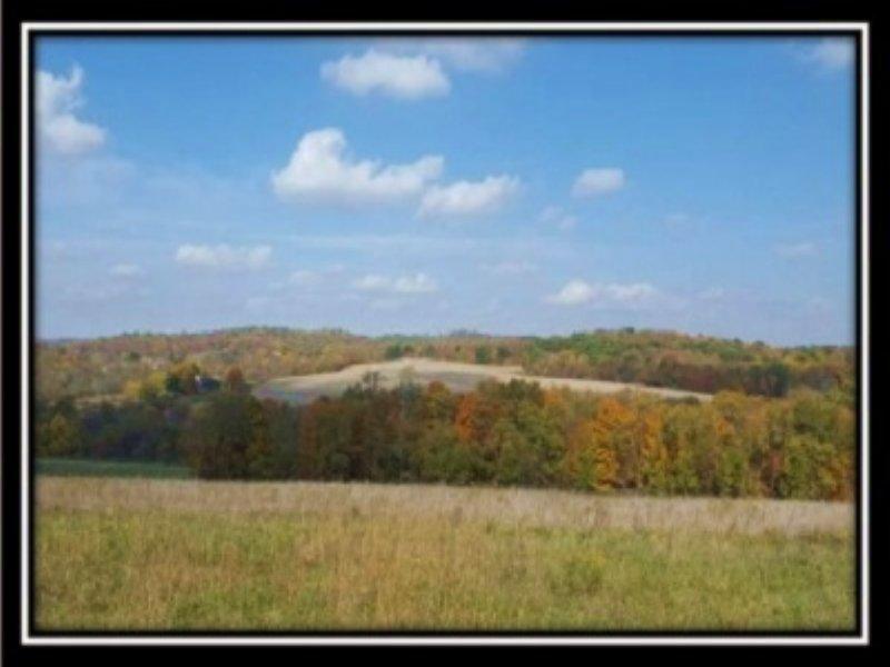 Scenic 105 Acre Pasture And Woods : Dresden : Muskingum County : Ohio