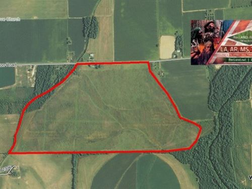 244 Ac, Wrp Tract For Deer : Holly Ridge : Richland Parish : Louisiana