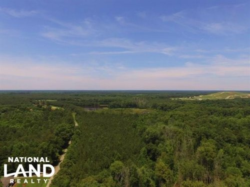 Aulander Timber And Hunting Tract : Aulander : Bertie County : North Carolina