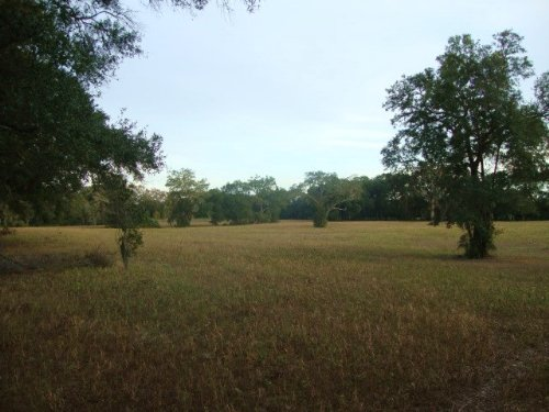 30 Acres Of Crop Land 772871 : Chiefland : Levy County : Florida