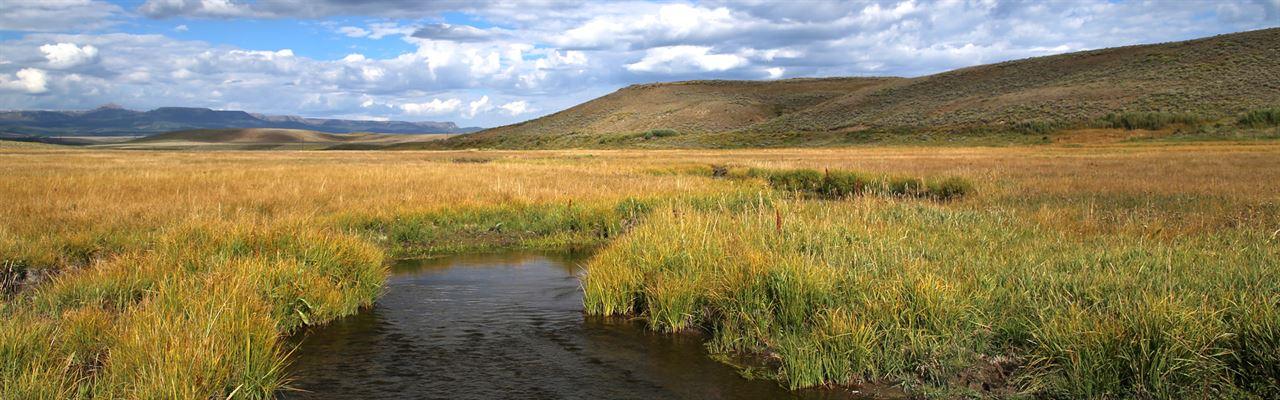 Egeria Creek Ranch