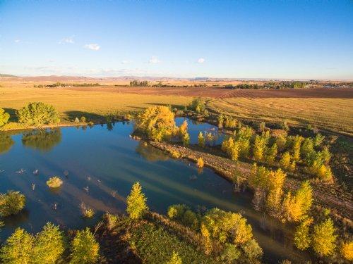 Northern Colorado Organic Farm : Fort Collins : Larimer County : Colorado