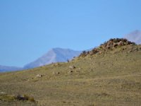 4.77 Acres In Hartsel Ranch