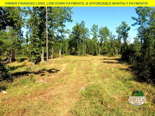 Large Gated Parcel, Great Hunting : Birch Tree : Shannon County : Missouri