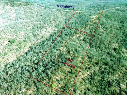 80 Acres With Trails, Great Hunting : Jadwin : Dent County : Missouri