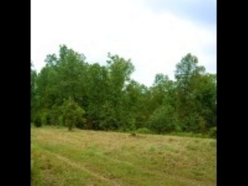 Off-grid 22 Wooded Acres With Creek : Alton : Oregon County : Missouri