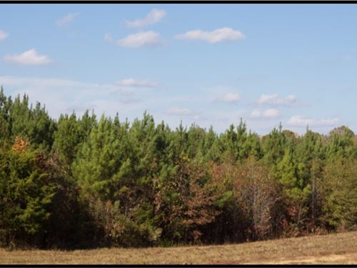 200 Acres In Oktibbeha And Choctaw : Starkville : Oktibbeha County : Mississippi