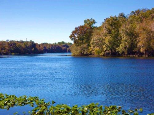 Rio Lindo North Tract : Trenton : Gilchrist County : Florida