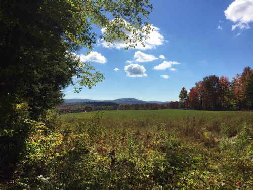 Mclaughlin Farm And Forest : Wilton : Franklin County : Maine