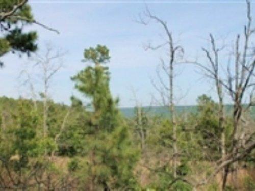 11.98 Acres Indian Ridge Ii : Daisy : Pittsburg County : Oklahoma