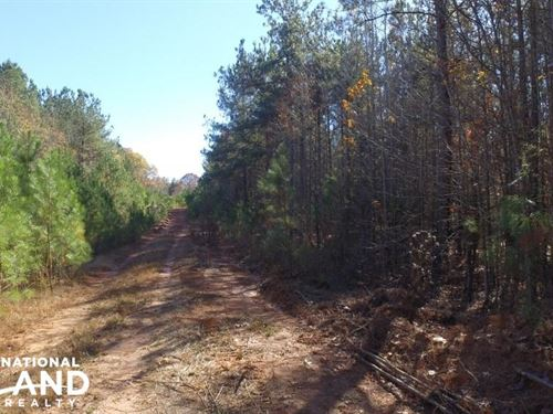 Recreational Land And Homesite : Abbeville : South Carolina