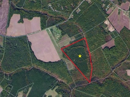 46.5 Acres Hunting Ranch : St. Stephens Church : King And Queen County : Virginia