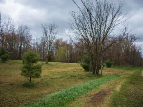 Build Camp & Hunt On This 10+ Acres : Stanton : Montcalm County : Michigan